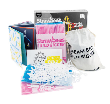 Strawbees Scientist Kit picture