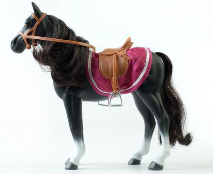 Lottie Seren The Welsh Mountain Pony picture