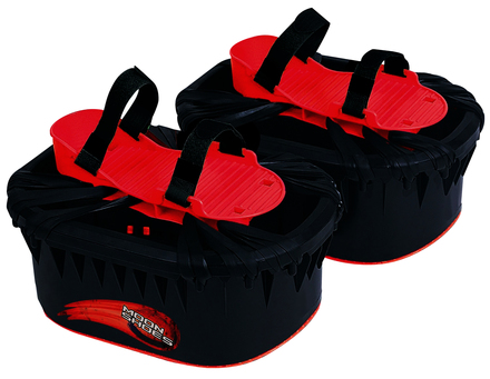 Moon Shoes picture