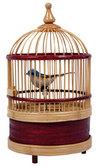 Singing Bird Cage