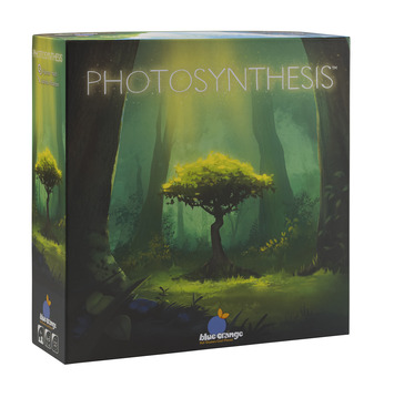 Photosynthesis - General picture