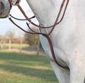 Running Martingale in Fancy Stitched Leather