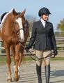 Ladies Competition Hunt Coat