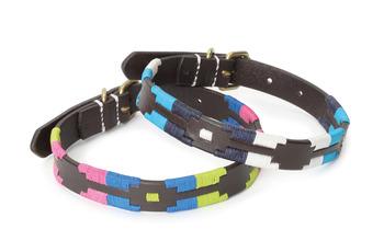 Moreno Polo Dog Collar picture