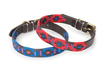 Criollo Polo Dog Collar picture