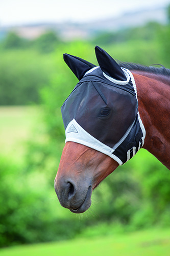 Fine Mesh Fly Mask - Ears picture