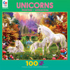 Unicorns - The Castle Unicorns