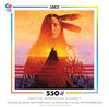 Native American Sunset - Two Feathers