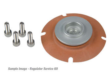 Carbureted Regulator Repair Kit picture