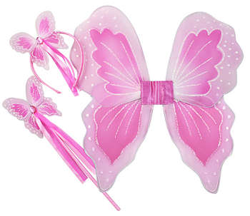 Wing Wand Set Pink picture