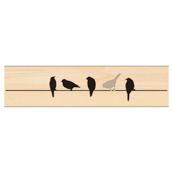 birds on wire picture