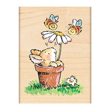 bees & bunny picture