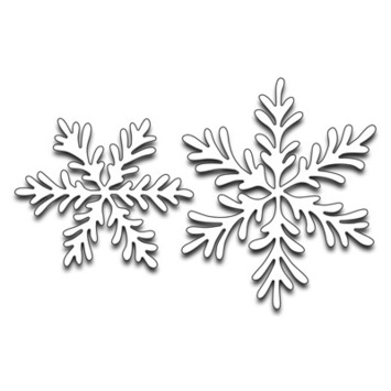 snowflake duo picture