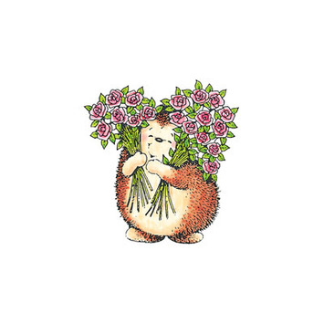 sweet hedgehog picture