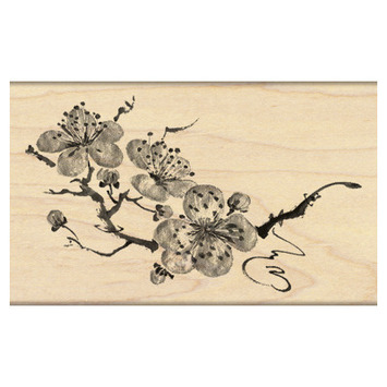 delicate bloosoms picture