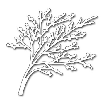 winter branch picture