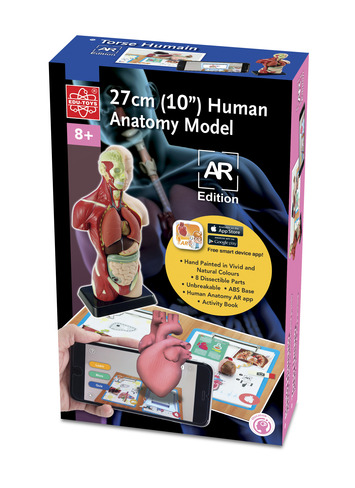 8 piece 10″ Human Anatomy Model AR Edition picture