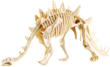 Dig it!  Stegasaurus picture