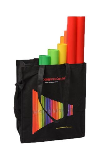 Move and Play with Boomwhackers picture