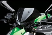 Kawasaki Screen Z1000
