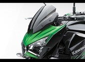 Windshield Z800 2013~