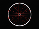 "Stock Torch Trail 24H 29"" Wheelset"