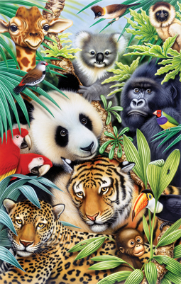 Animal Magic picture