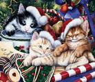 Meow-Christmas