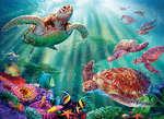 Turtle Voyage