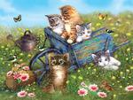 Field Trip for Kittens