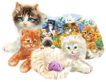 A Litter of Kittens picture