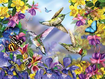 Butterflies & Hummingbirds picture
