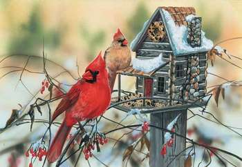 Cardinal's Rustic Retreat picture