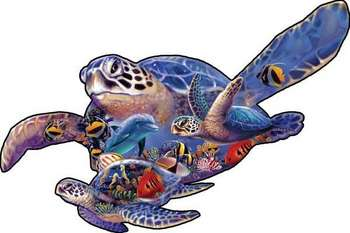 Swimming Lesson (sea turtle shape) picture