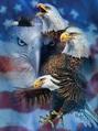Patriotic Eagles