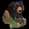 Charcoal Black Bear