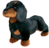 Spats Black & Tan Dachshund