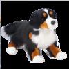 ALPS BERNESE MTN DOG