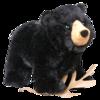 MORLEY BLK BEAR