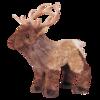 Eddie Elk