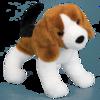 Salsa Beagle