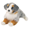 SINCLAIR AUSTRALIAN SHEPHERD