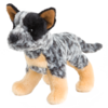 Clanger Australian Cattle Dog