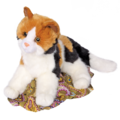 ALL SPICE CALICO CAT