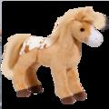 Diana Golden Blanket Appaloosa Horse