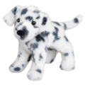 Dooley Dalmatian
