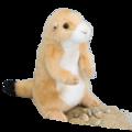 Digger Prairie Dog