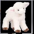 Foggy Lamb