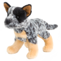 CLANGER AUS CATTLE DOG