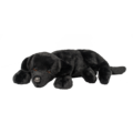 LICORICE BLK LAB*